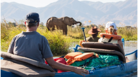 4 Ways to Save Money on Your African Adventure