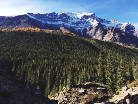 Why Hiking is Good for Your Health