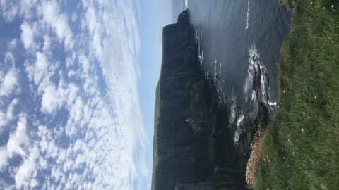 Seeking Ambiance and Tranquility for Your Vacation? Consider the Cliffs of Moher