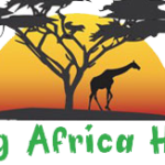 Profile picture of Excitingafrica